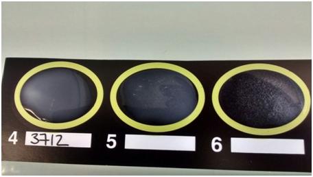Validando técnica de análisis de Legionella