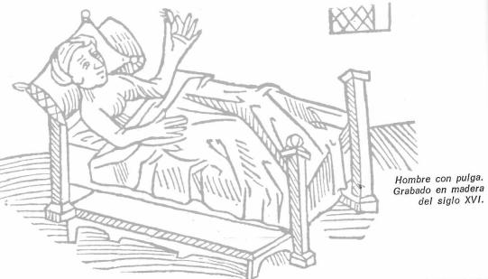 animales parásitos siglo XVI